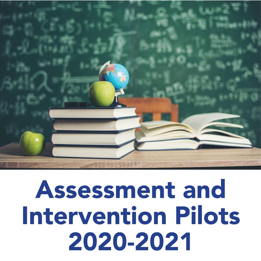 Assessment and Intervention Pilots 2020-2021